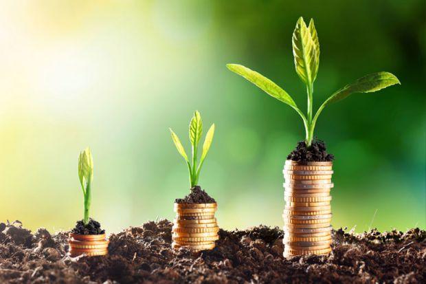 افزایش ۲۹۵ درصدی سرمایه گذاری در طرحهای صنعتی ایلام